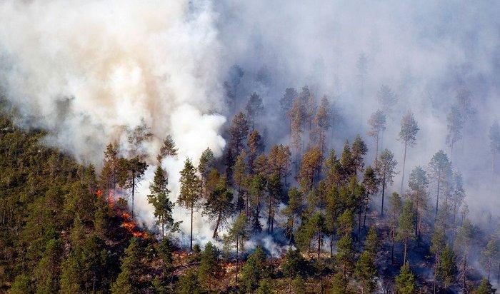 10мая вИркутской области незарегистрировано новых пожаров