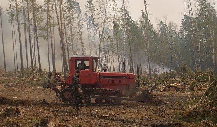 ВИркутской области значительно сократилось количество лесных пожаров