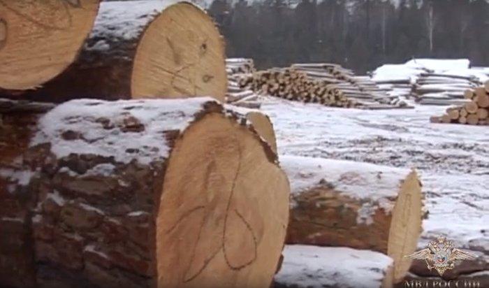 ВНижнеудинске осудили 13черных лесорубов (Видео)