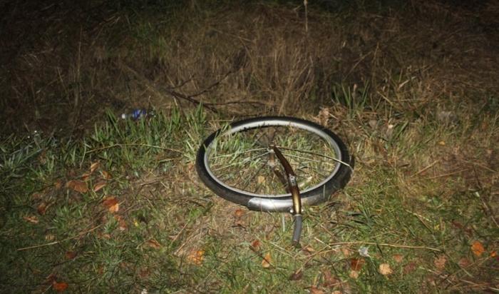 Пьяного водителя, сбившего насмерть 13-летнего велосипедиста вУсолье, приговорили к4годам колонии