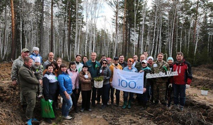 Влесах Иркутской области высадят 278тысяч саженцев деревьев