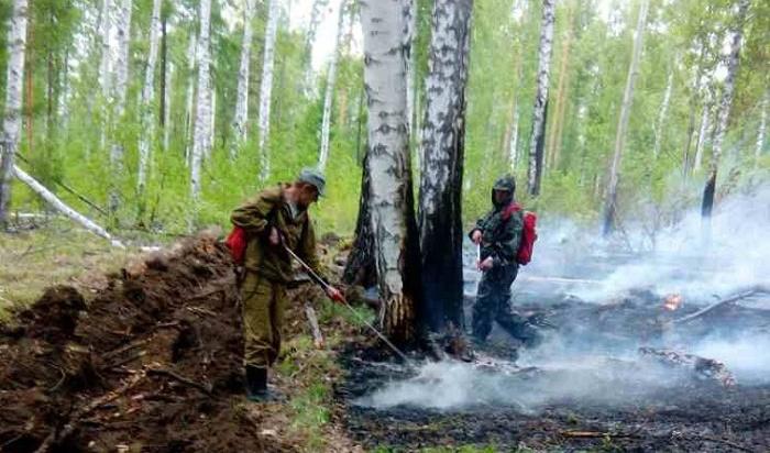 ВИркутской области продолжает гореть лес