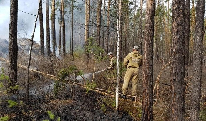 Девять лесных пожаров ликвидировали вИркутской области 23мая