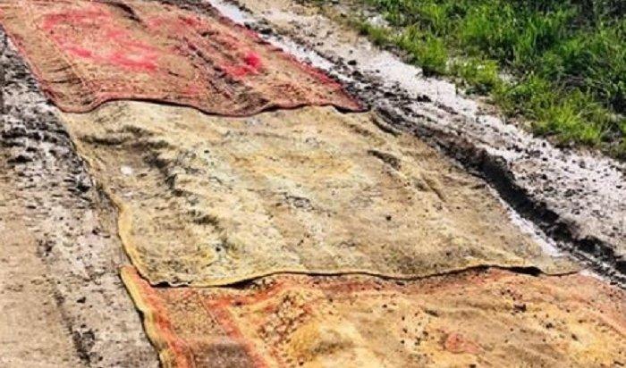 Калужские дачники расстелили ковры побездорожью