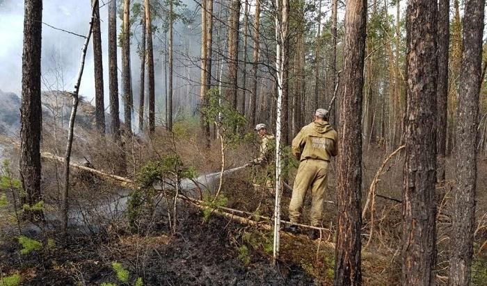 Высокий класс пожарной опасности установился в21районе Приангарья из-за усиления ветра