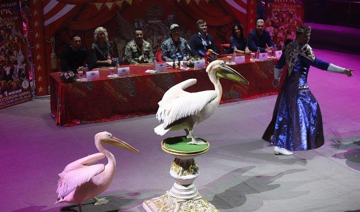 ВИркутск приехал королевский цирк Гии Эрадзе (Фото+Видео)