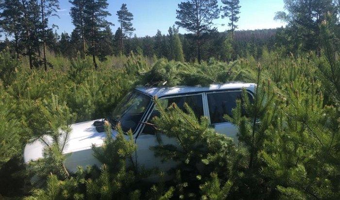 Юные иркутяне угнали три автомобиля заодну ночь вмикрорайоне Топкинском (Видео)