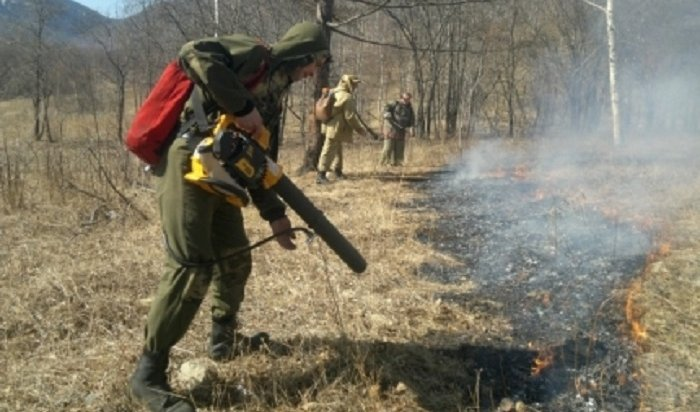 Выход влес ограничили в21районе Иркутской области
