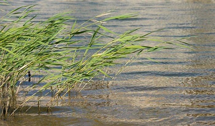 17-летний юноша утонул вреке Белой вЧеремховском районе
