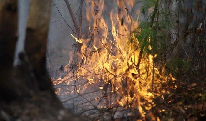 Курильщику изБоханского района грозит до4лет тюрьмы запожар влесу
