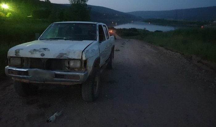 Двое детей-пешеходов погибли вИркутской области повине пьяных водителей