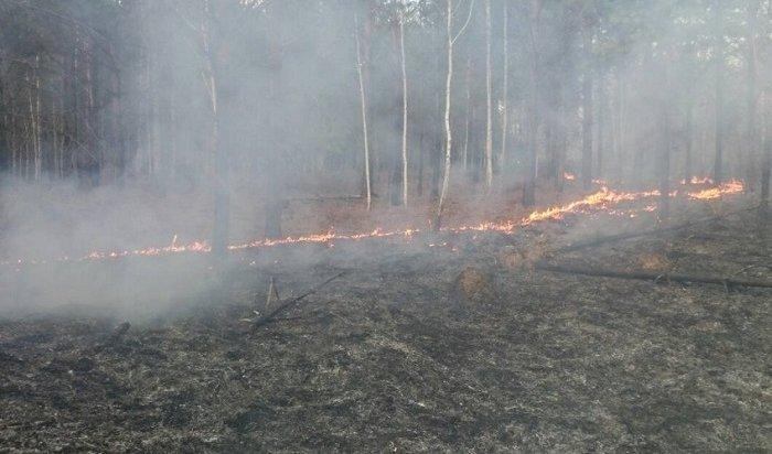 Режим ЧСввели вУсть-Илимском иЖигаловском районах из-за лесных пожаров