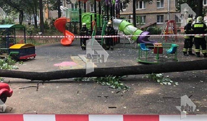 ВМоскве врезультате падения дерева надетскую площадку погиб ребенок