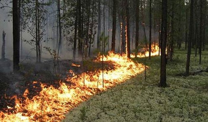 Борьба слесными пожарами продолжается вИркутской области