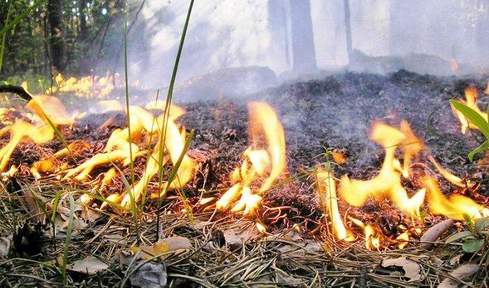 Излагеря вБурятии эвакуировали детей из-за лесного пожара