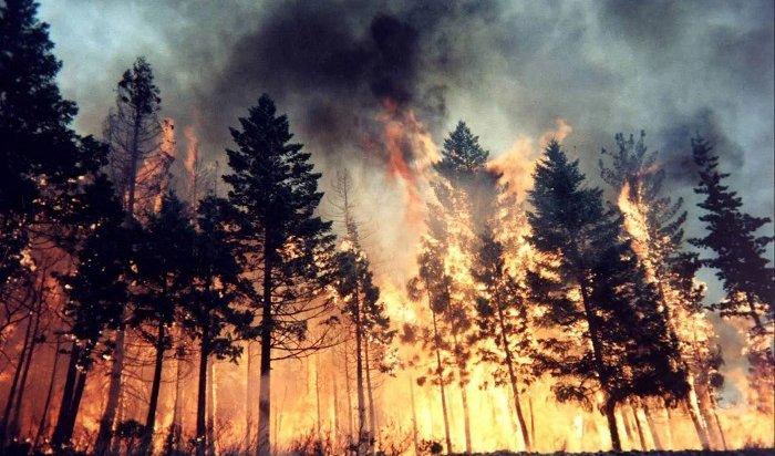 ВИркутской области иКрасноярском крае ввели режим ЧСиз-за лесных пожаров