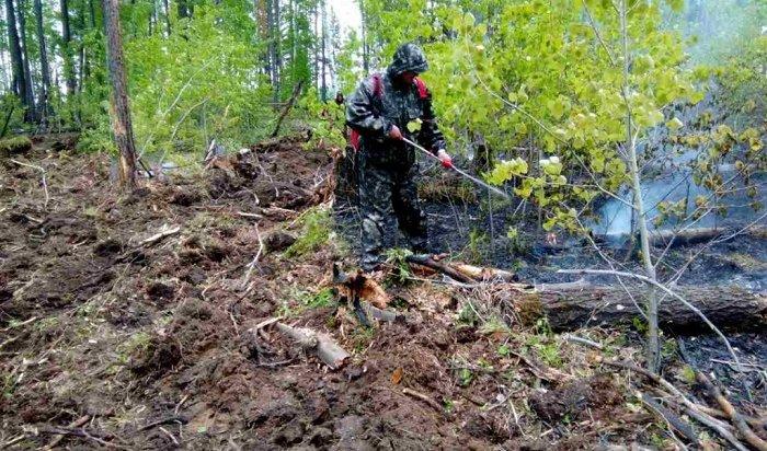 Лес горит наплощади 750тысяч гектароввИркутской области
