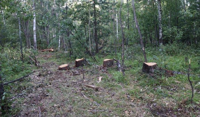 Черных лесорубов задержали вКачугском районе