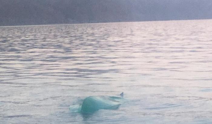 Двое рыбаков пропали без вести насевере Иркутской области