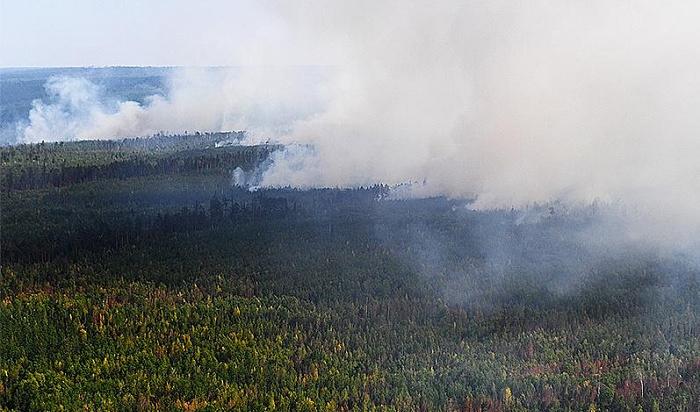 Тайга продолжает гореть насевере Иркутской области