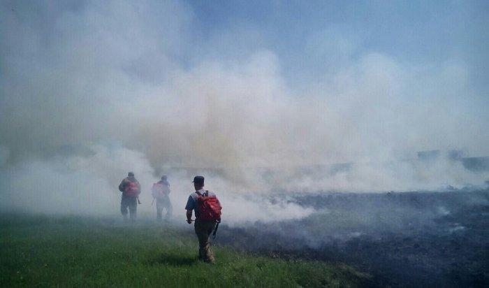 Площадь лесных пожаров вИркутской области сократилась на455тысяч гектаров
