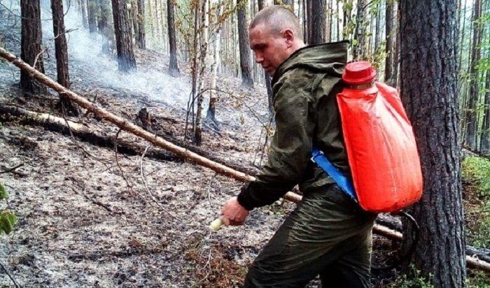 Пять лесных пожаров действуют насевере Иркутской области