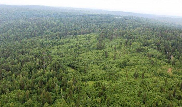 ВИркутской области отменили режим ЧСполесным пожарам