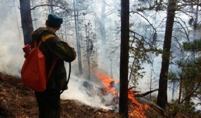 ВИркутской области горит 2623гатайги
