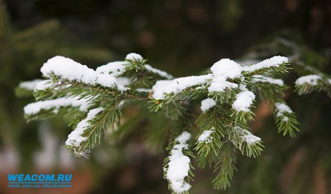 Мокрый снег пройдет вИркутской области вближайшие дни