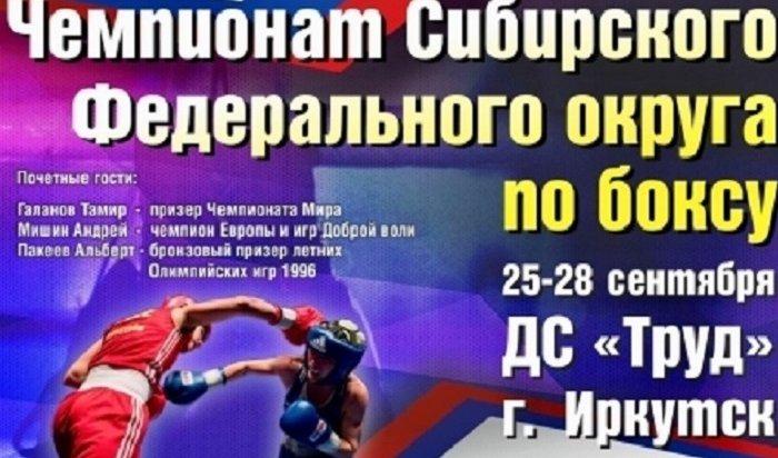 ВИркутске проходит чемпионат СФО побоксу
