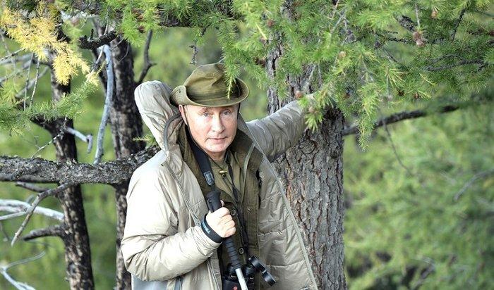 Путин собрал грибы втайге иполюбовался Енисеем накануне дня рождения (Видео)