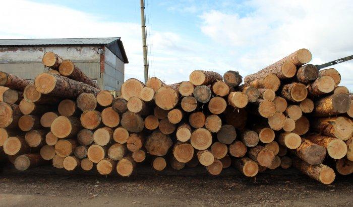 Иркутянина обвиняют в контрабанде леса на 60 миллионов рублей