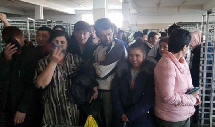 Более 50нелегальных мигрантов выявили вкондитерском цехе вНово-Ленино (Видео)