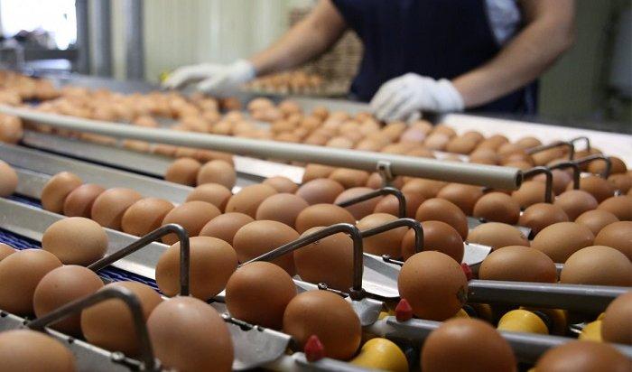 Жители России едят слишком много яиц