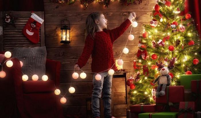 ВРоскачестве посоветовали, как выбрать новогоднюю елку