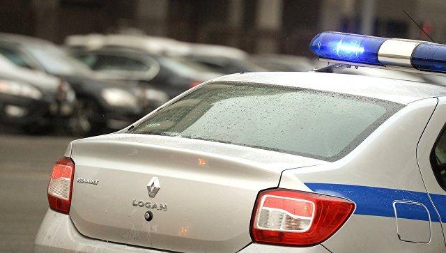 ВУсольском районе иномарка столкнулась сослужебным автомобилем полиции