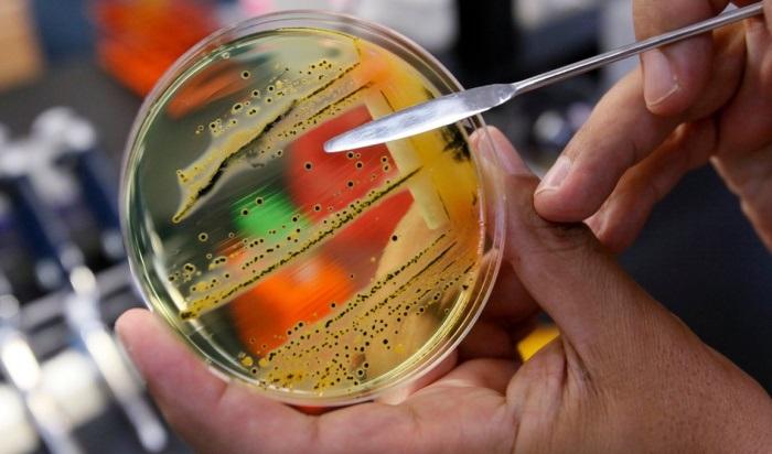 Количество заболевших сальмонеллезом увеличилось вИркутской области почти вдва раза