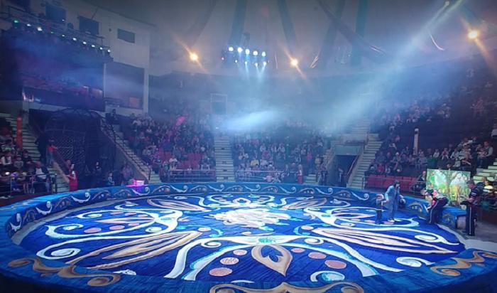 Иркутский цирк временно закрыли из-за нарушений пожарной безопасности