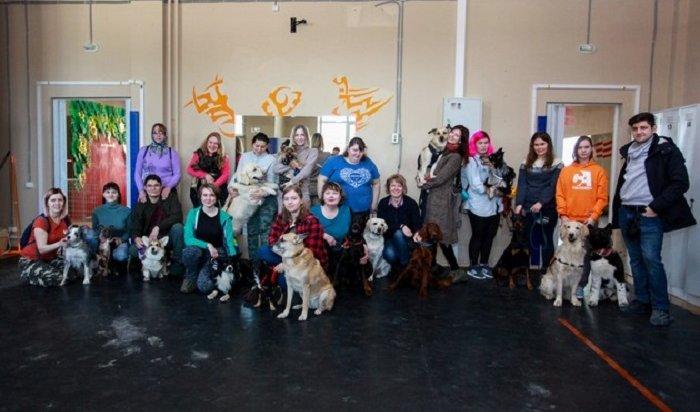 ВИркутске открыли кинологический центр для собак (Фото)