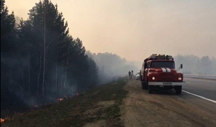 Первый лесной пожар вэтом году произошел под Иркутском
