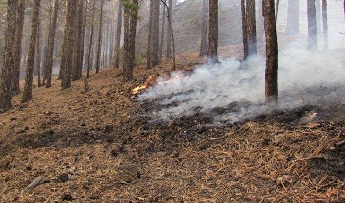 Пожары вПриангарье происходят из-за сжигания сухой травы имусора