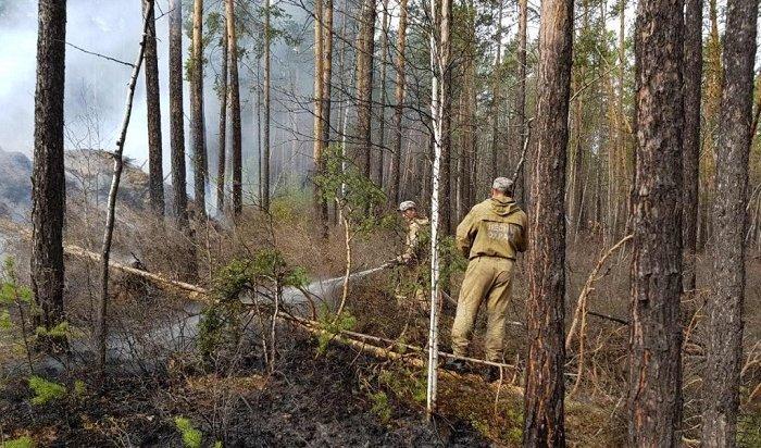 Лес продолжает гореть вИркутской области наплощади более 5000га