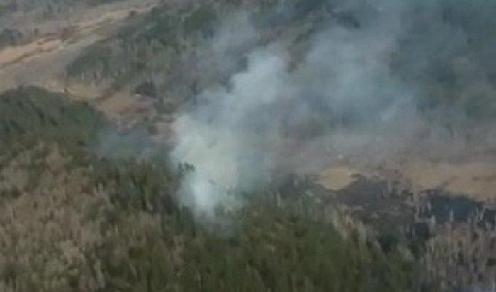Свиновников лесных пожаров вИркутской области будут взыскивать затраты наихтушение