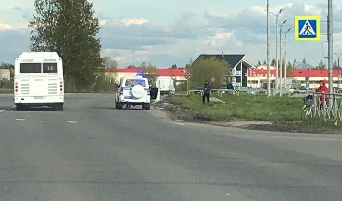 ВВеликом Новгороде водитель внедорожника раздавил семью уток (Видео)