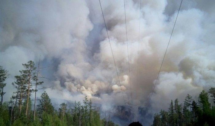 ВТайшетском районе из-за крупного лесного пожара ввели режим ЧС