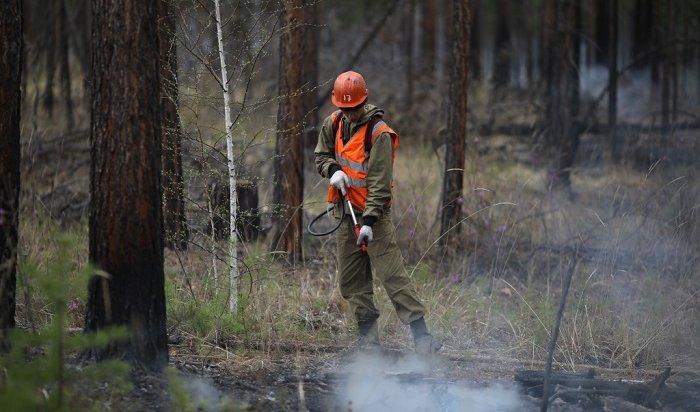 Тайга продолжает гореть вИркутской области наплощади почти 600га