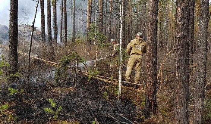 Лес продолжает гореть вИркутской области наплощади более 1,7тысячи га