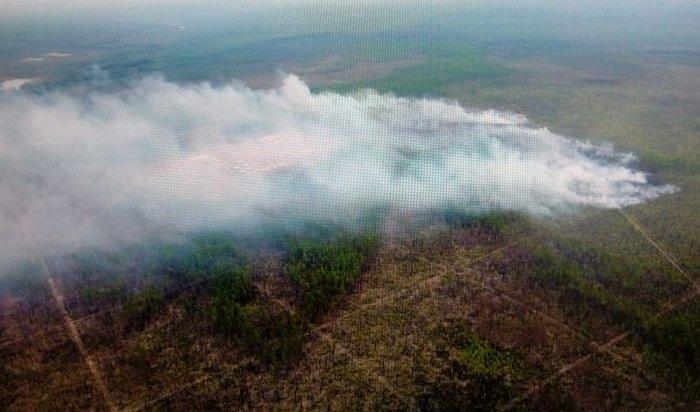 Возникновение лесных пожаров вПриангарье будут контролировать при помощи системы видеомониторинга