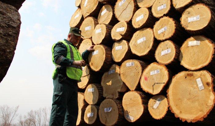 ВИркутской области таможня выявила контрабанду леса на173,3млн. рублей