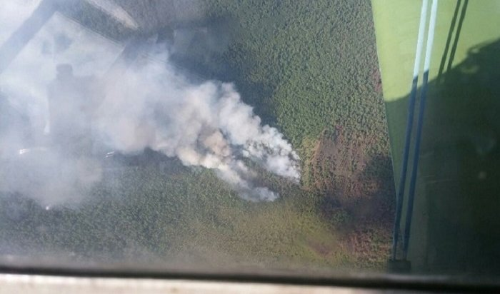 Площадь лесных пожаров вИркутской области выросла почти до7тысяч гектаров